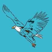 Alas de Águila