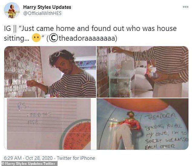 Harry Styles entra em casa de fã para esperar conserto do seu carro