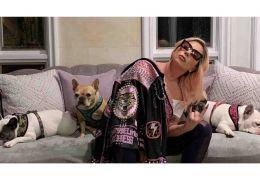 Cachorros de Lady Gaga são roubados de passeador