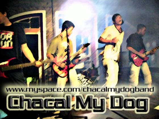 Chacal My Dog