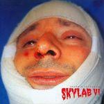 Skylab VI